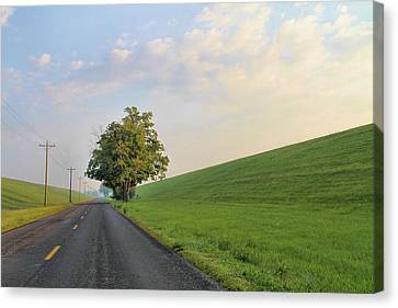 Country Roads Canvas Print by Dan Sproul