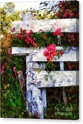 Country Rose On A Fence 2 Canvas Print by Janine Riley