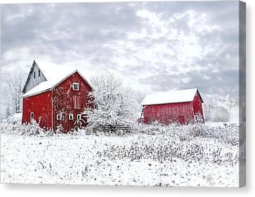 Country Snowfall Canvas Print by Diana Klamut