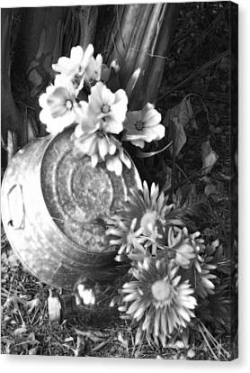 Country Summer - Bw 03 Canvas Print by Pamela Critchlow