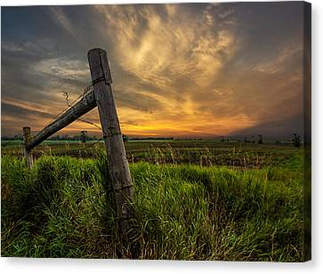 Barbed Wire Canvas Print - Country Sunrise by Aaron J Groen