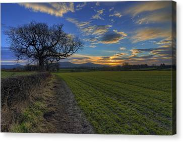 Country Sunrise Canvas Print by Ian Mitchell