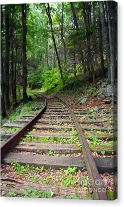 Country Train Tracks Canvas Print by Doc Braham