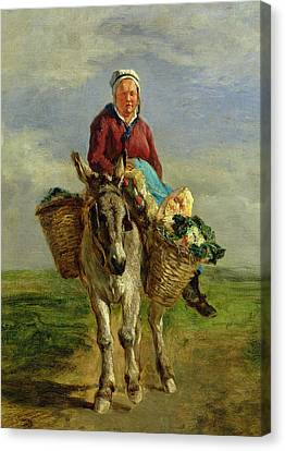 Country Woman Riding A Donkey Canvas Print by Constant-Emile Troyon