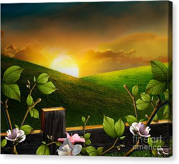 Countryside Sunset Canvas Print by Peter Awax