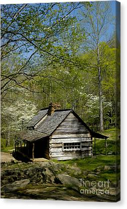 Mountain Cabin Canvas Print - Counttry Cabin by Paul W Faust -  Impressions of Light