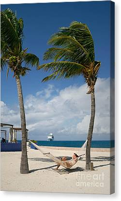 Couple In Hammock On Beach Canvas Print by Amy Cicconi