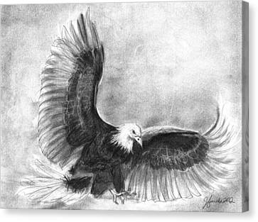 Falcons Canvas Print - Courage by J Ferwerda