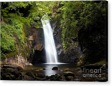 Courthouse Falls I 2010 Canvas Print