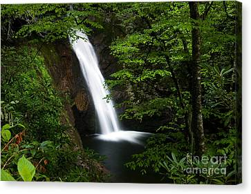 Courthouse Falls II 2010 Canvas Print