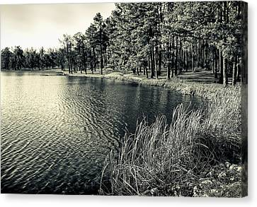 Canvas Print featuring the photograph Cove by Greg Jackson