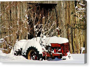 Covered In Snow Canvas Print by Heather Allen