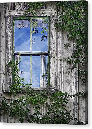 Covered In Vines - Old House Window Canvas Print by Nikolyn McDonald