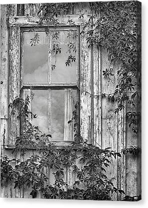 Abandoned House Canvas Print - Covered In Vines - Window In Old House - Black And White by Nikolyn McDonald