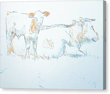 Cow Canvas Print - Cow And Calf Drawing by Mike Jory