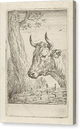 Cow At A Willow Fence, Aert Schouman, Paulus Potter Canvas Print by Artokoloro
