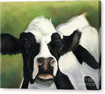 Cow Closeup Canvas Print by Charlotte Yealey