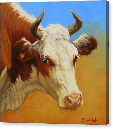 Cow Face Canvas Print by Margaret Stockdale