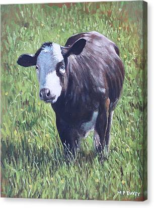 Cow In Grass Canvas Print by Martin Davey