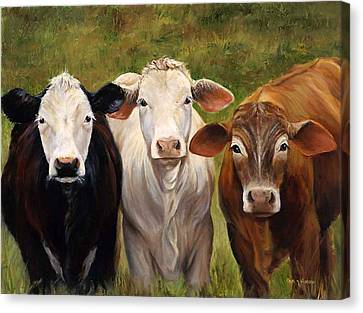 Cow Painting Of Three Amigos Canvas Print by Cheri Wollenberg