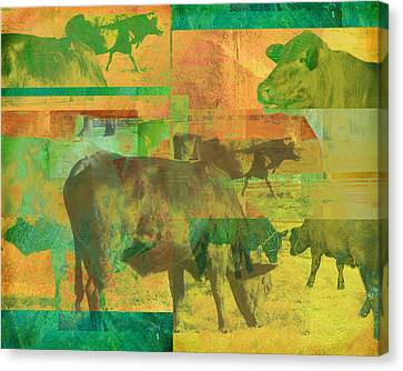 Cow Pasture Collage Canvas Print by Ann Powell