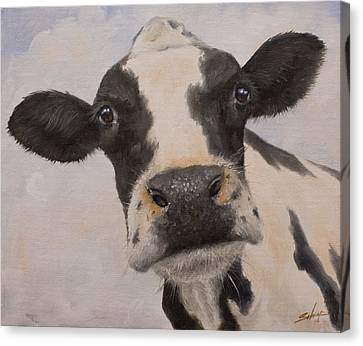 Cow Portrait I Canvas Print by John Silver
