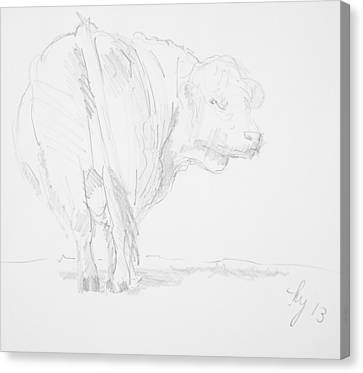 Cow Sketch Canvas Print by Mike Jory