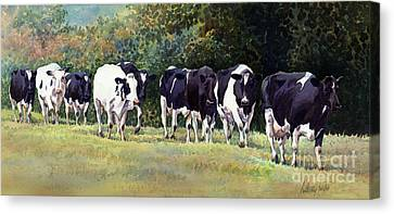 Cow Trail Canvas Print by Anthony Forster