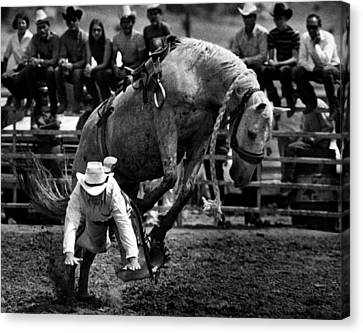 Cowboy Gets Bucked Off Canvas Print by Retro Images Archive