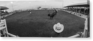 Cowboy Riding Bull At Rodeo Arena Canvas Print by Panoramic Images