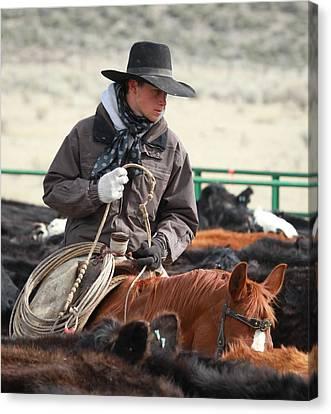 Cowboy Signature 9 Canvas Print by Diane Bohna