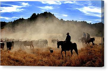 Cowboys Driving Cattle, Moab, Utah, Usa Canvas Print