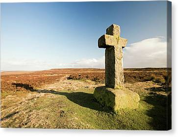 Cowpers Cross Canvas Print by Ashley Cooper