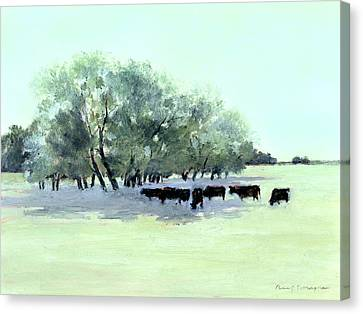 Cows 7 Canvas Print