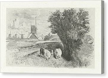 Cows At A Road, Charles Rochussen Canvas Print by Charles Rochussen