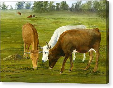 Canvas Print featuring the painting Cows Gossip Session In Louisiana Pasture by Lenora  De Lude