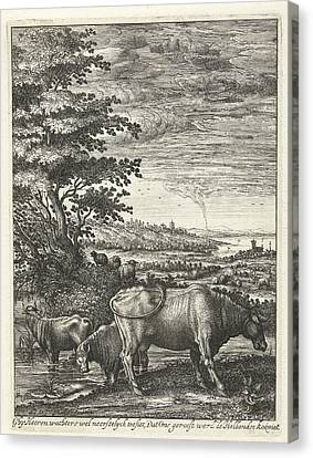 Cows In A Landscape, Hendrick Hondius Canvas Print