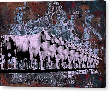 Cows In Order 2 Canvas Print