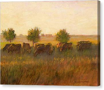 Cows1 Canvas Print