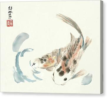 Coy Koi Canvas Print