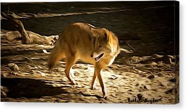 Coyote Canvas Print by Barbara Snyder