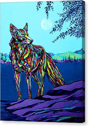 North American Wildlife Canvas Print - Coyote by Derrick Higgins