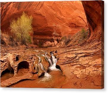 Beautiful Creek Canvas Print - Coyote Gulch Texture by Leland D Howard