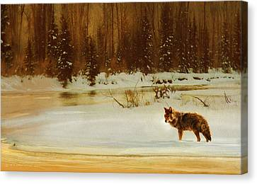 Coyote On The Snake River Canvas Print