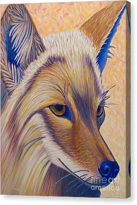 Coyote Summer Canvas Print