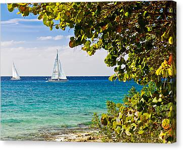 Canvas Print featuring the photograph Cozumel Sailboats by Mitchell R Grosky