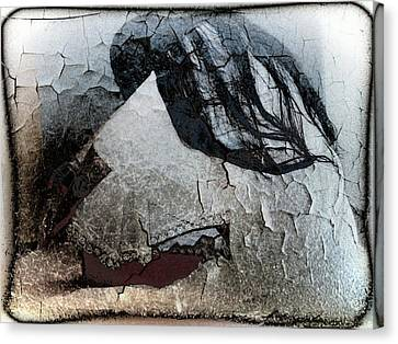 Cracked Dreams Canvas Print by Gun Legler