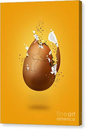Cracked Egg Canvas Print by Andrea Aycock