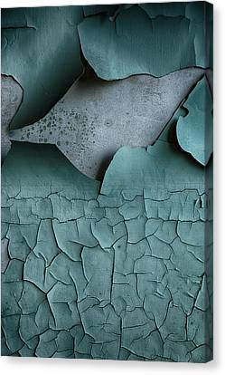 Cracked Peeling Paintwork Canvas Print by Russ Dixon