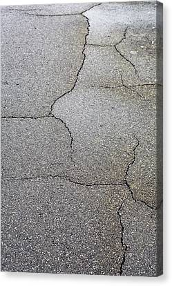 Cracked Tarmac Canvas Print by Tom Gowanlock